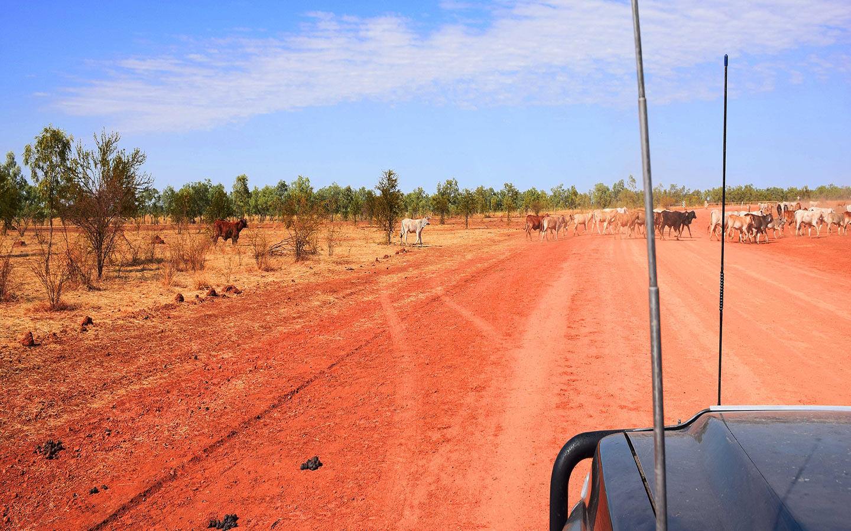 Gibb River Road dans les Kimberley, au Nord de l'Australie