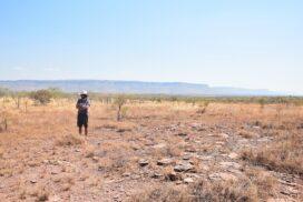 Kimberley et Gibb River Road : Nord de l'Australie en 4x4