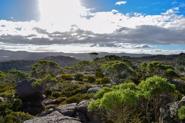 Paysage magnifique de l'ile de Tasmanie