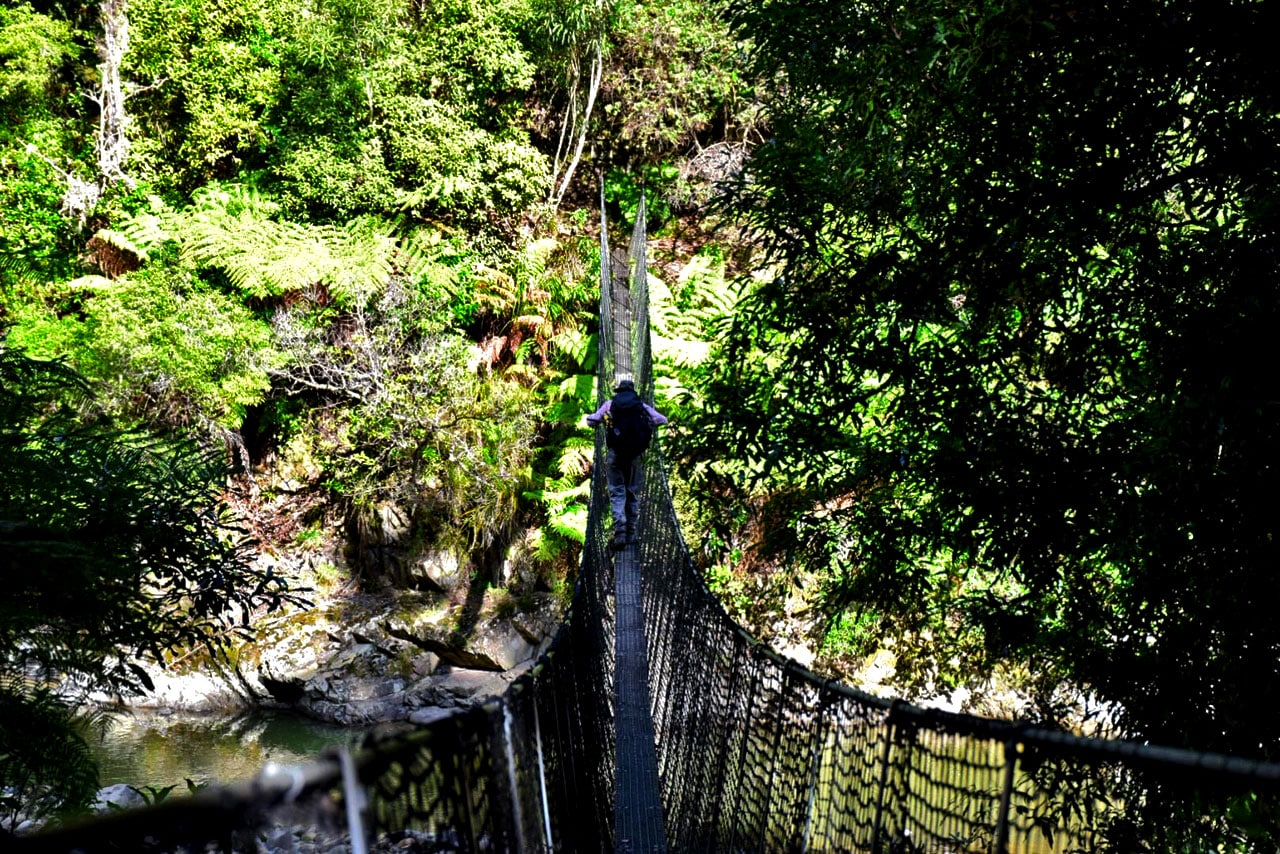 Randonnée parc national Nouvelle Zélande