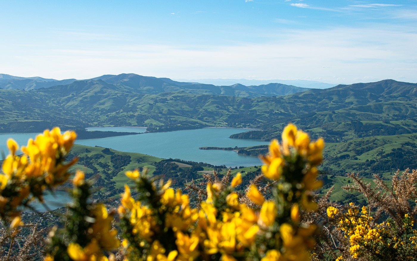 Randonnée à Akaroa en Nouvelle-Zélande panorama splendide