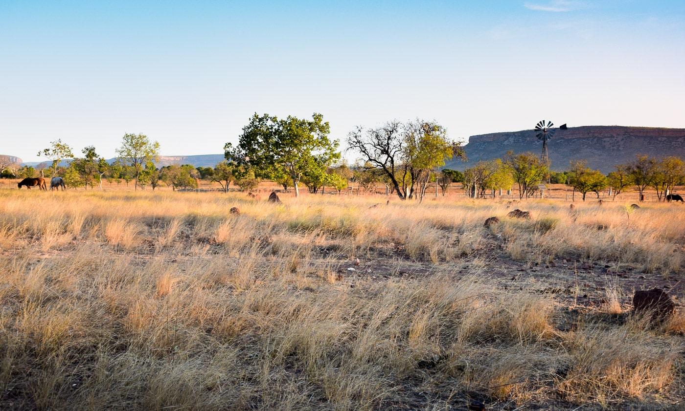 photo de voyage dans l'Outback de l'Australie