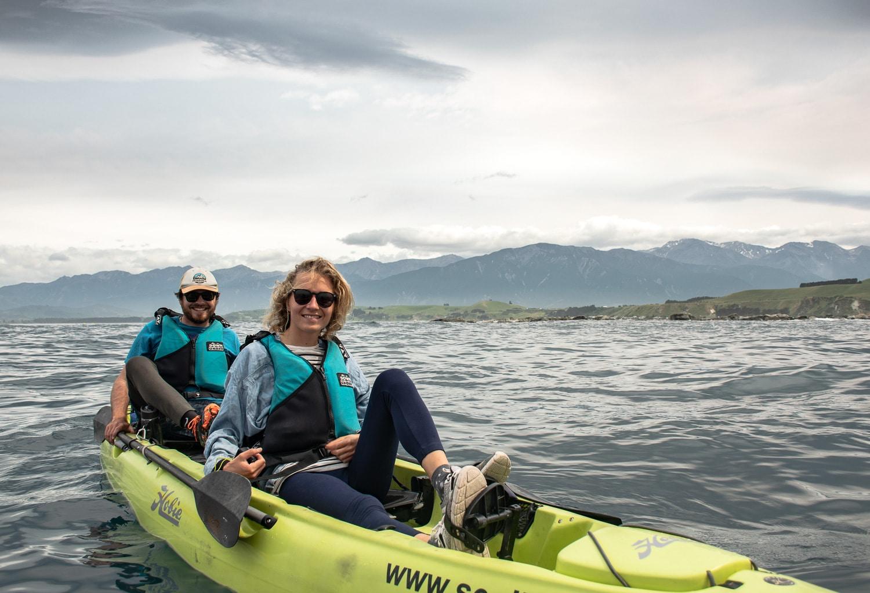 Kayak pour voir les otaries à Kaikoura