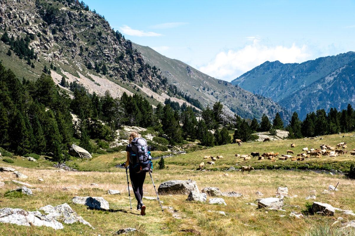 Gorges de la Carança dans les Pyrénées Orientales