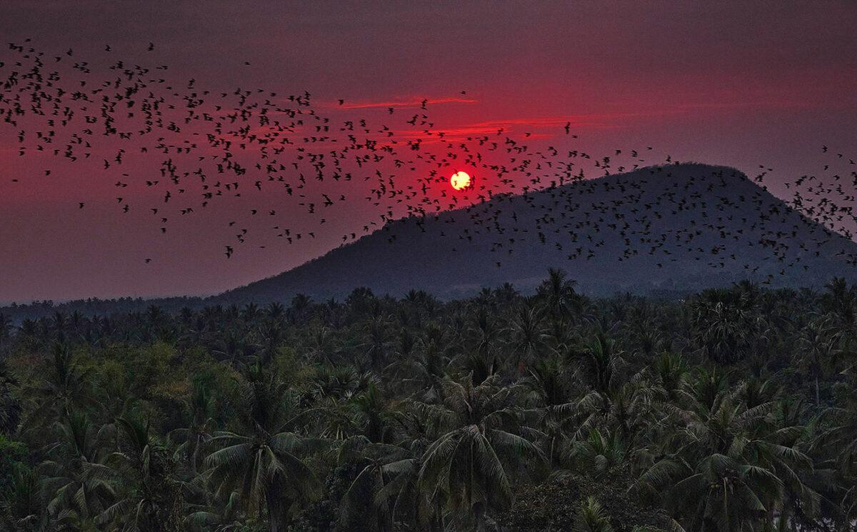 Coucher de soleil sublime asie du sud est blog de voyage