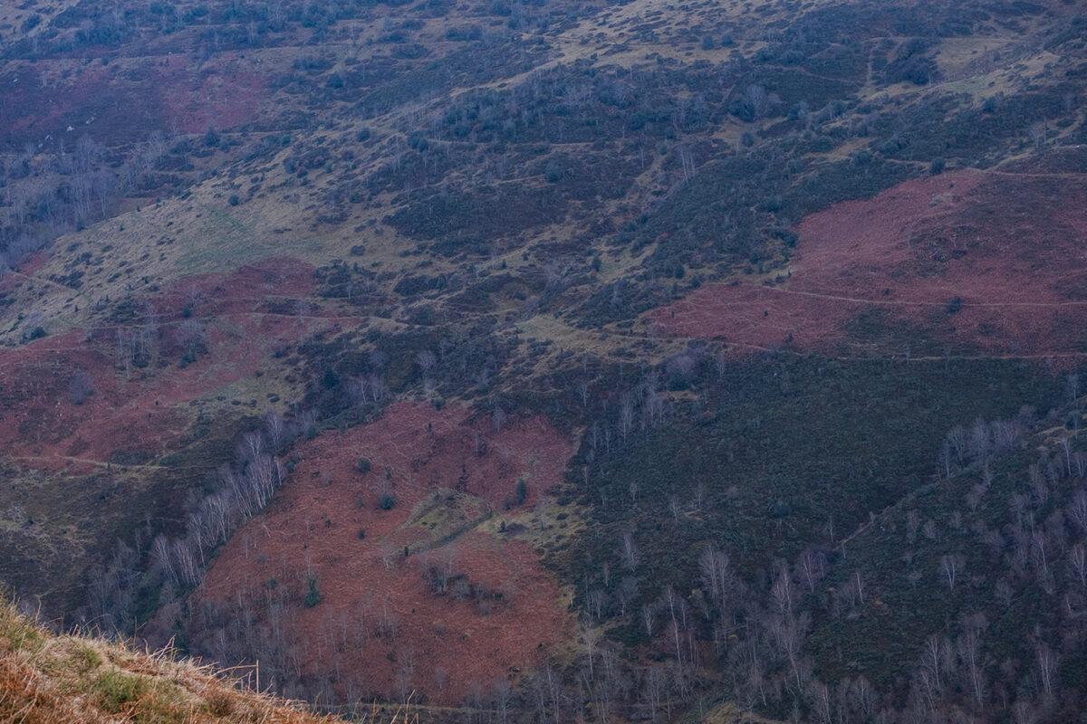 Couleurs d'automne en vallée de Campan