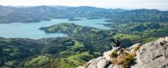 Randonnée à Akaroa et vue panoramique sur la péninsule de Banks