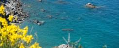 Crique sur la méditerrannée